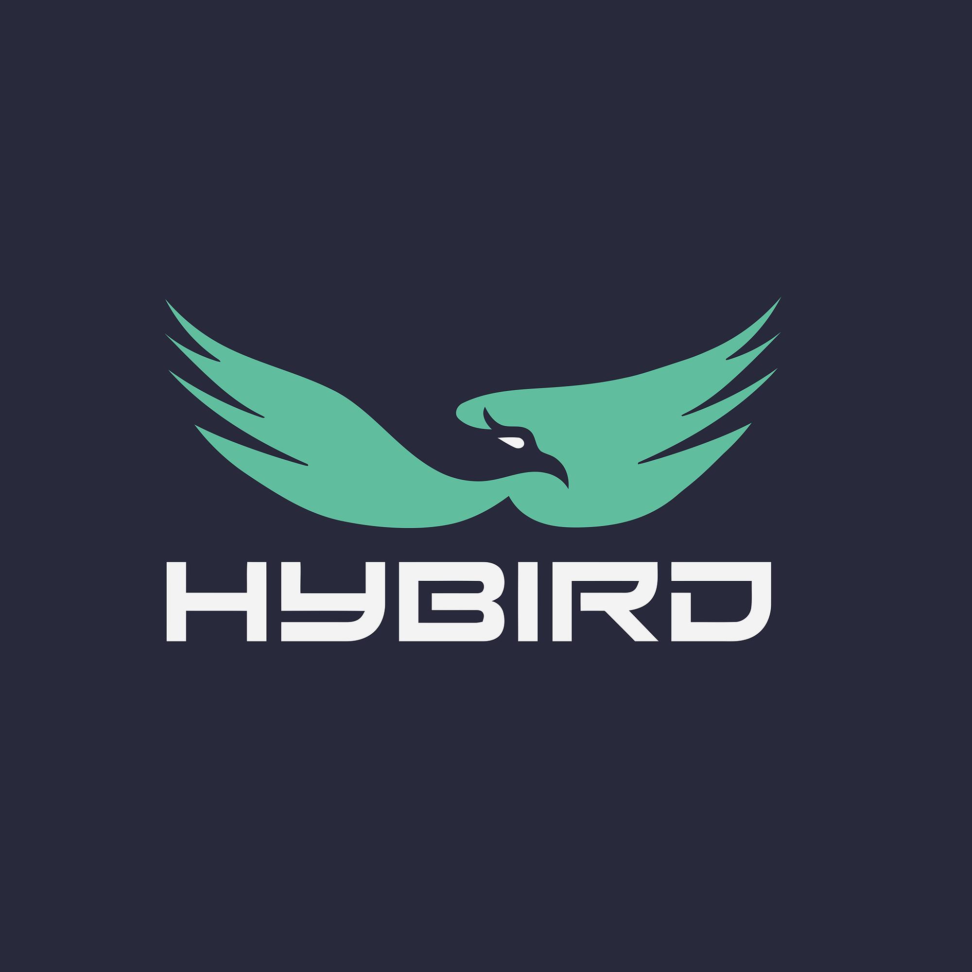 HyBird Limited